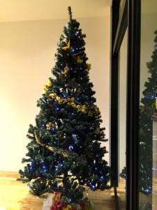 名古屋店クリスマスツリー