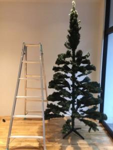 クリスマスツリーと脚立の比較
